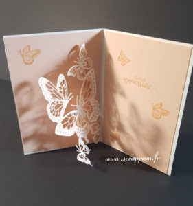 carte-popup-papillons