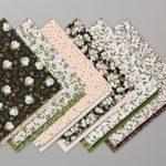 Allée de magnolia