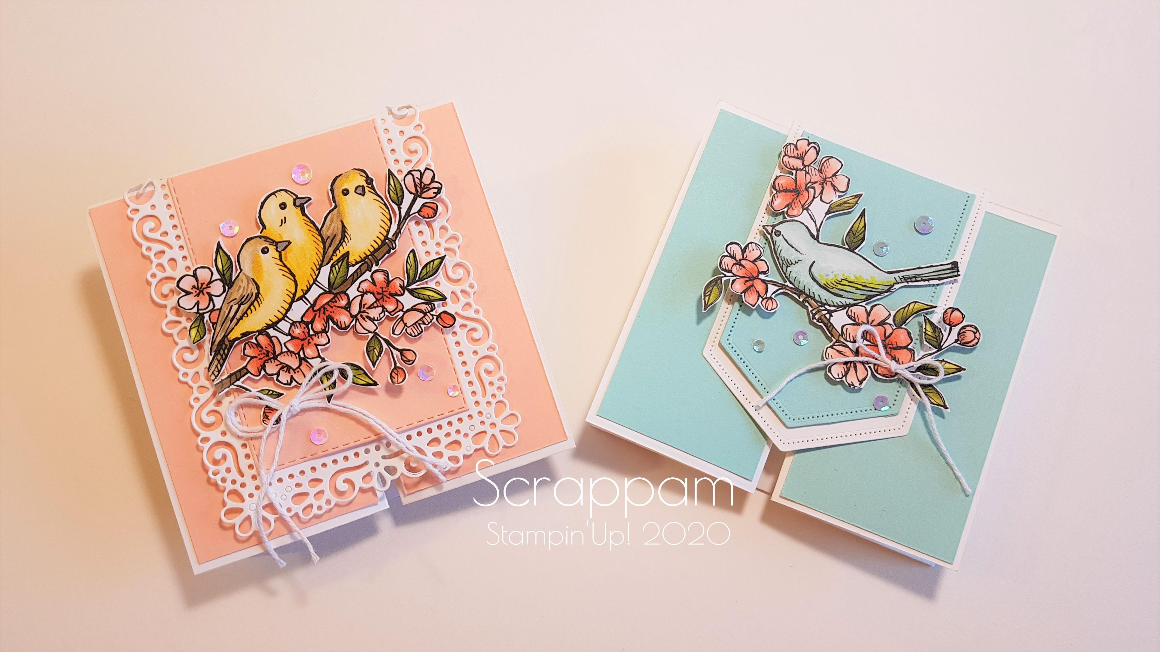 Carte flip flap Oiseaux