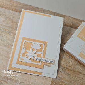 carte Papaye Pale